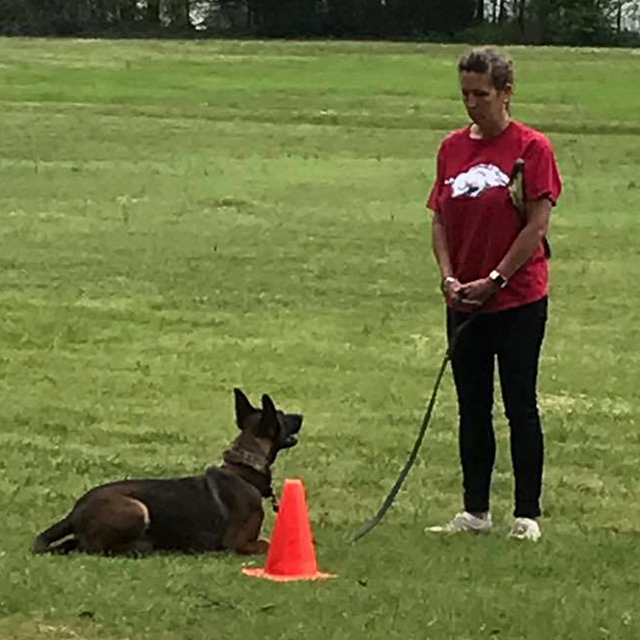 Little Rock Dog Training Academy