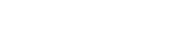 Get Real Dog Training Results Now